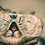 サワコの朝に主演する高橋一生のメガネがほしい!ブランドや販売店は?