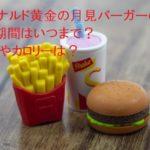 マクドナルド黄金の月見バーガーの販売期間はいつまで?口コミやカロリーは?