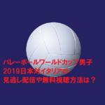 バレーボールワールドカップ男子2019日本対イタリアの見逃し配信や無料視聴方法は?