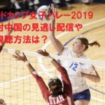 ワールドカップ女子バレー2019日本対中国の見逃し配信や無料視聴方法は?