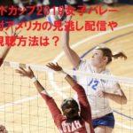 ワールドカップ2019女子バレー日本対アメリカの見逃し配信や無料視聴方法は?