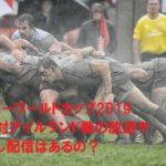ラグビーワールドカップ2019日本対アイルランド戦の放送や見逃し配信はあるの?