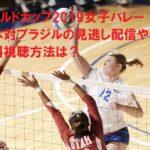 ワールドカップ2019女子バレー日本対ブラジルの見逃し配信や無料視聴方法は?